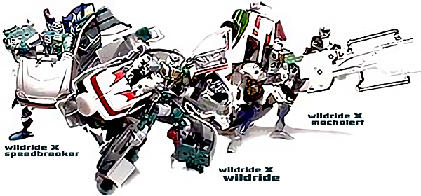warugakiaction-2009-12-20_001229wwild.jpg
